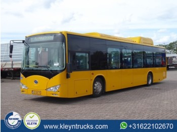 City bus BYD EBUS 12 GREENCITY full electric