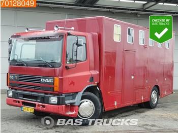 DAF 65.180 4X2 Manual Euro 1 ATi Pferdetransporter Horse truck NL-Truck - transporte de ganado camión