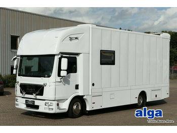 MAN 7.150 BL TGL, Pferdetransporter,Verkaufsfahrzeug  - transporte de ganado camión