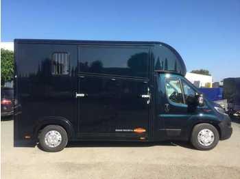 Fiat Böckmann Compact Stall Pferde-LKW Miet - ciężarówka do przewozu zwierząt