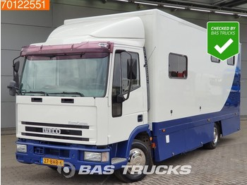 Iveco Eurocargo ML80E15 4X2 Pferdetransporter Paardenwagen Horse truck - ciężarówka do przewozu zwierząt