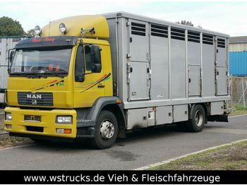 Ciężarówka do przewozu zwierząt MAN 15.220 Menke Einstock