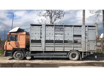 MAN 19.372 - ciężarówka do przewozu zwierząt