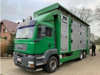Ciężarówka do przewozu zwierząt MAN 26.350 LX Finkl 3 Stock Hubdach Lift