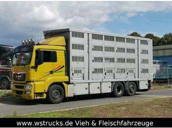 Ciężarówka do przewozu zwierząt MAN 26.440 LX Menke 4 Stock Ladelift Hubdach: zdjęcie 1