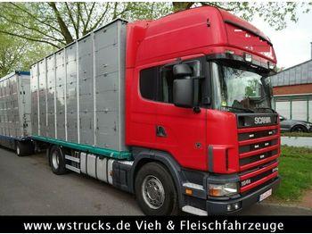 Scania 164/580 164/580Topline 2 Stock  - ciężarówka do przewozu zwierząt