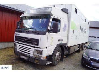 Volvo FM12 - ciężarówka do przewozu zwierząt