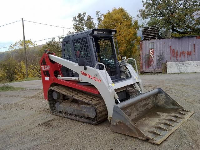 Takeuchi Tl250 Crawler Loader From Italy For Sale At Truck1  Id  802518