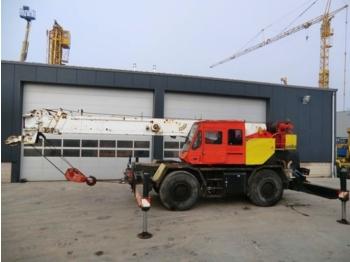 Tadano TR-300E 4x4x4 30t - mobile crane