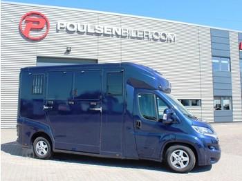 Fiat Ducato Horsetruck - kravas automašīna dzīvnieku pārvadāšanai