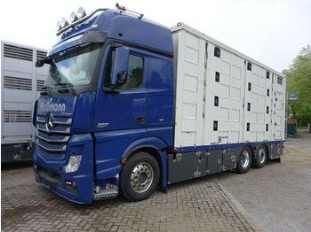 Mercedes-Benz Actros  2551 Menke 4 Stock Vollalu Hubach  - Tiertransporter LKW