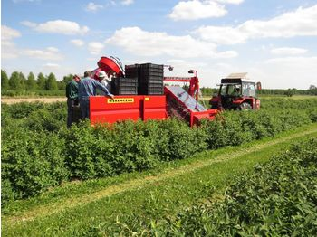 WEREMCZUK Berry harvesters JOANNA Line - wijnoogstmachine