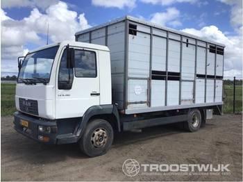 MAN L2000 b130 - djurtransport lastbil