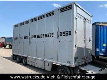 Reboque transporte de gado Menke 2 Stock Vollalu