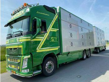 Volvo FH 13-540 6X2 EURO 6 - 3 STOCK + CUPPERS 2 AS AA  - állatszállító teherautó