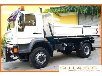 MAN (STEYR) LE 18.280  4x4 /TÜV neu/E 3/Winterdienst  - tovornjak prekucnik