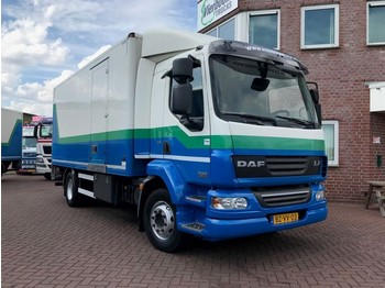DAF LF 55-220 EURO 5 BOX WITH TAILLIFT - box truck