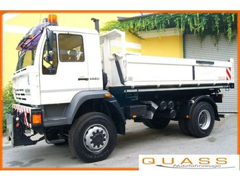 MAN (STEYR) LE 18.280  4x4 /TÜV /Euro 3/Winterdienst  - cab chassis truck