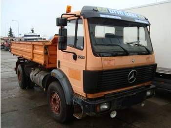 Cab chassis truck MERCEDES BENZ 1729 SK