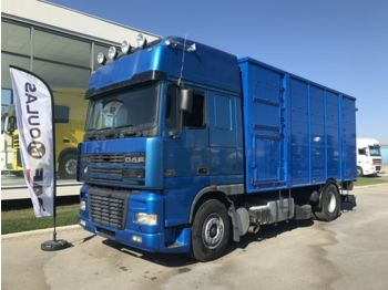Livestock truck DAF 95XF.480: picture 1