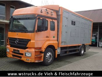 Livestock truck Mercedes-Benz Axor 1833 2 Stock Michieletto