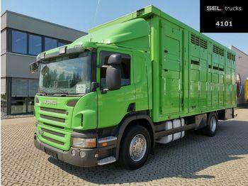 Livestock truck Scania P380DB4X2MNA / 2 Stock