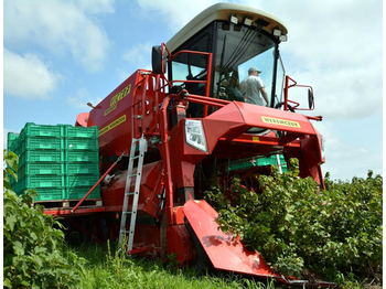 WEREMCZUK Berry harvesters VICTOR Line - combina de recoltat struguri